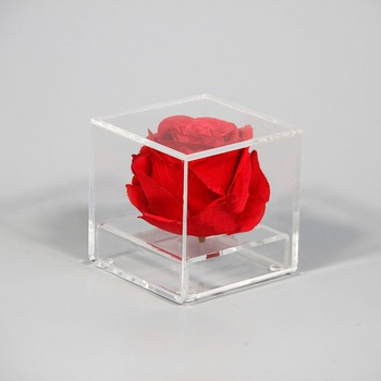 acrylic material flower arrangement box rose display case acrylic rectangular flower vases : rectangular flower vases - startupinsights.org