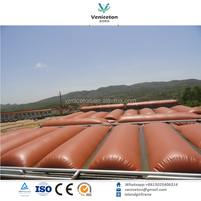 Veniceton Cooking Fuel Application low cost biogas 500m3 plant for medium and heating