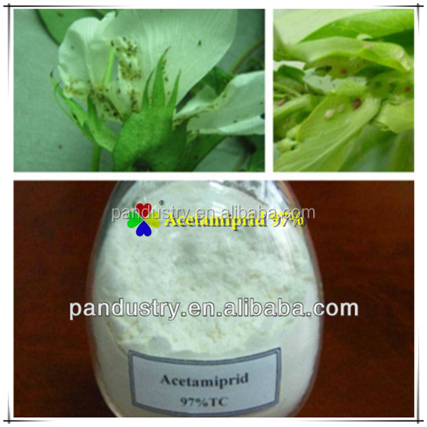 High quality chemical pesticide in China 96%TC 99%TC 70% WP acetamiprid thrips