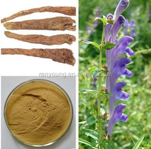 Top Quality Natural Baikal Skullcap Extract 15%/30%