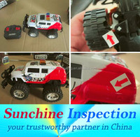 Remote Control Car Quality Inspection in China /On-site Quality Assurance with skilled Inspectors