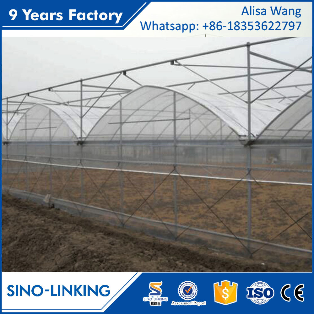 SINOLINK low price multi-span galvanized steel pipe structure with gas heater film greenhouse used for tomato
