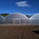 Hoop Greenhouse Shelving with Cooling System