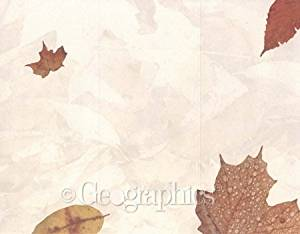 "Crushed Leaves Tri-Fold Brochures, 8.5""x11"", 100/PK"