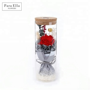 NEW ARRIVAL Eternal Rose Wishing Bottle Lights Creative Gifts Birthday Gifts Preserved Rose Wholesale
