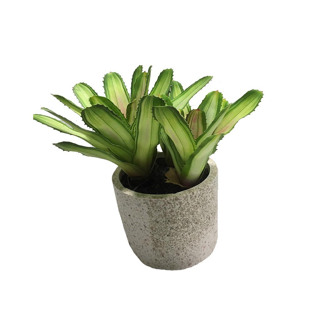 Plante Haute En Pot ciment blanc artificiel en pot vert plantes succulentes pour la décoration  de meubles - buy plantes succulentes vertes artificielles en pot de ciment