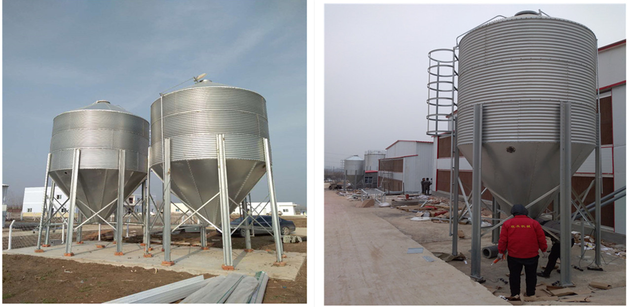 3 to 50 Ton Customized Feed Silo/ Small Silo for Chicken