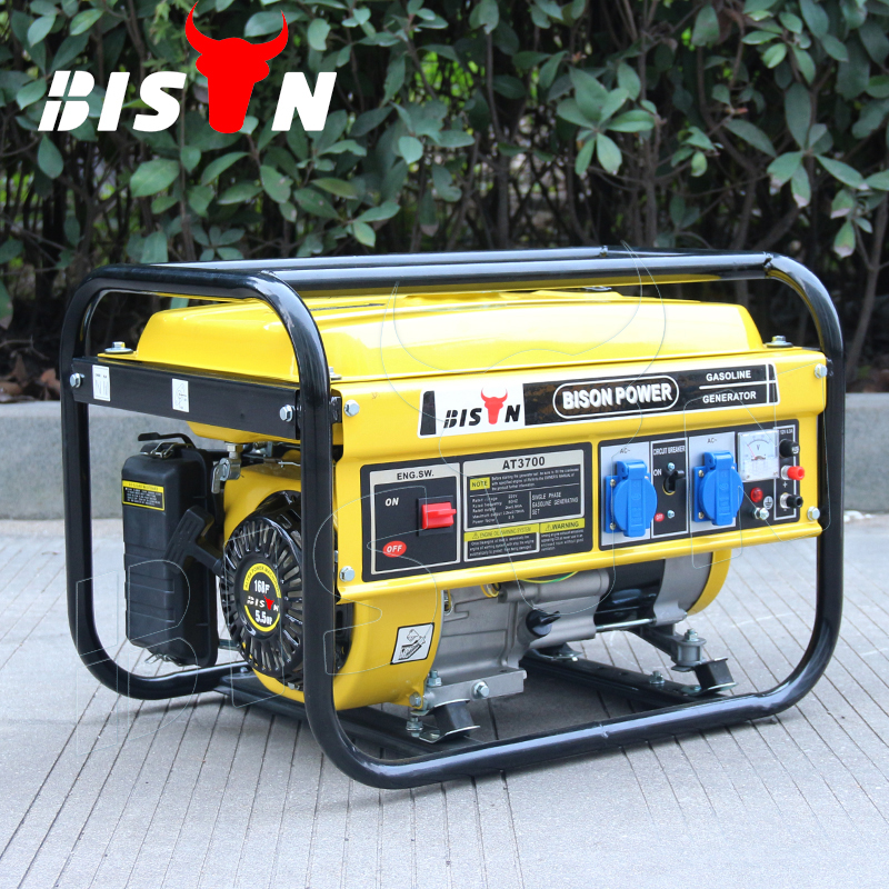 BISON(CHINA) 2KW Power Hand Crank Mini Recoil Portable Gasoline Generator