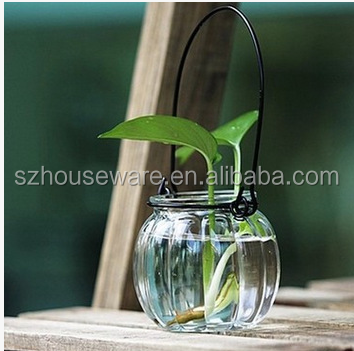 Transparent glass bottle pumpkin vase hydroponic plant bottle vase hanging hydroponic containers inserted narcissus flower pots