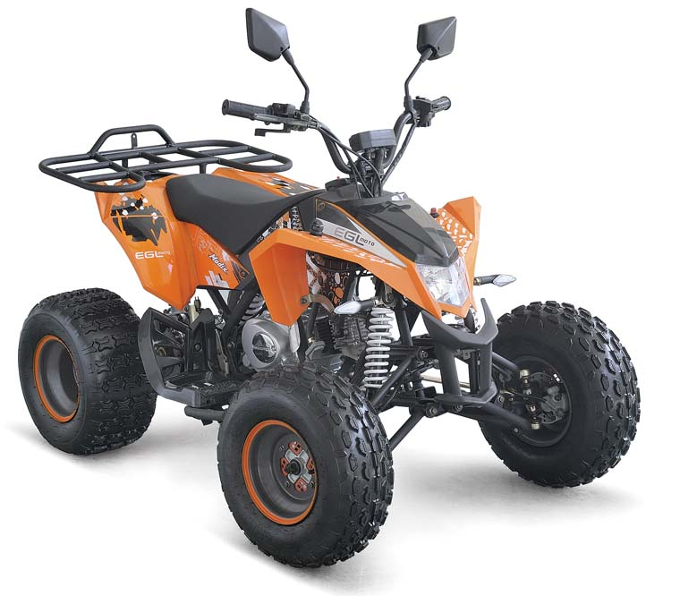 Mini Quad ATV 50CC with CE/EEC