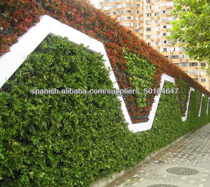 Decoraci n para la pared macetas de pl stico greenwall macetas jard n pared ve otros productos - Macetas en la pared ...
