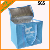 Factory Offer OEM produce perfect Food Storage Cooler Bag with Zipper