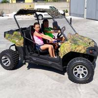 300CC 4 Wheel Driving Adults Mini UTV for Sale with CE Certification