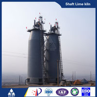 Newly low price active lime vertical shaft lime kiln with free installation accessed golden supplier