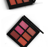 Best selling 6 color blusher palette Make You Own Logo blusher makeup cheek blusher for Facial
