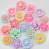 100pcs Mix Resin Little Glitter Flower Flatback Cabochons DIY Scrapbooking Decorative Craft Making