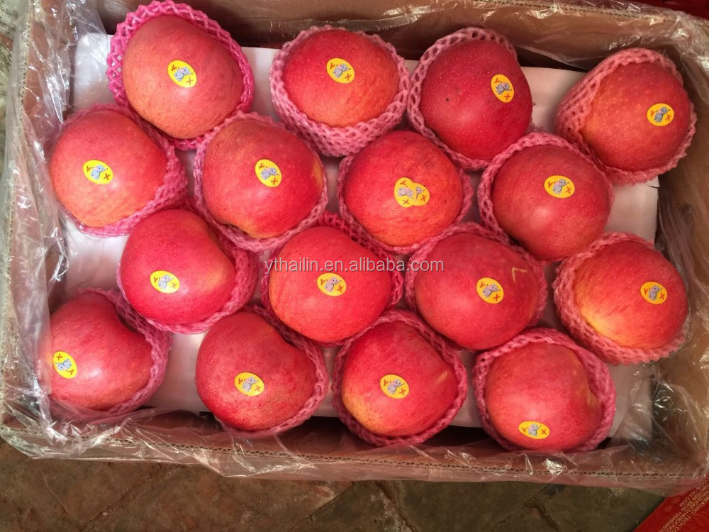 China exported Qinguan apple