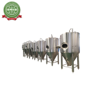 500L beer brewing equipment / brite tank for micro brewery for sale