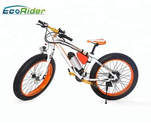 New Arrival EcoRider E6-5 Bike Electric Removable Battery Electric Bicycle Vietnam E Bike
