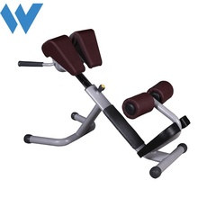 <span class=keywords><strong>जिम</strong></span> वापस Hyperextension व्यायाम रोमन कुर्सी