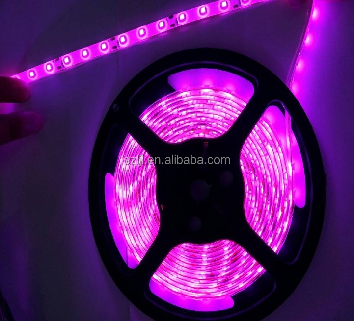 Wholesale Portable Flat Led Light Strip 300leds 12V Single Color ...