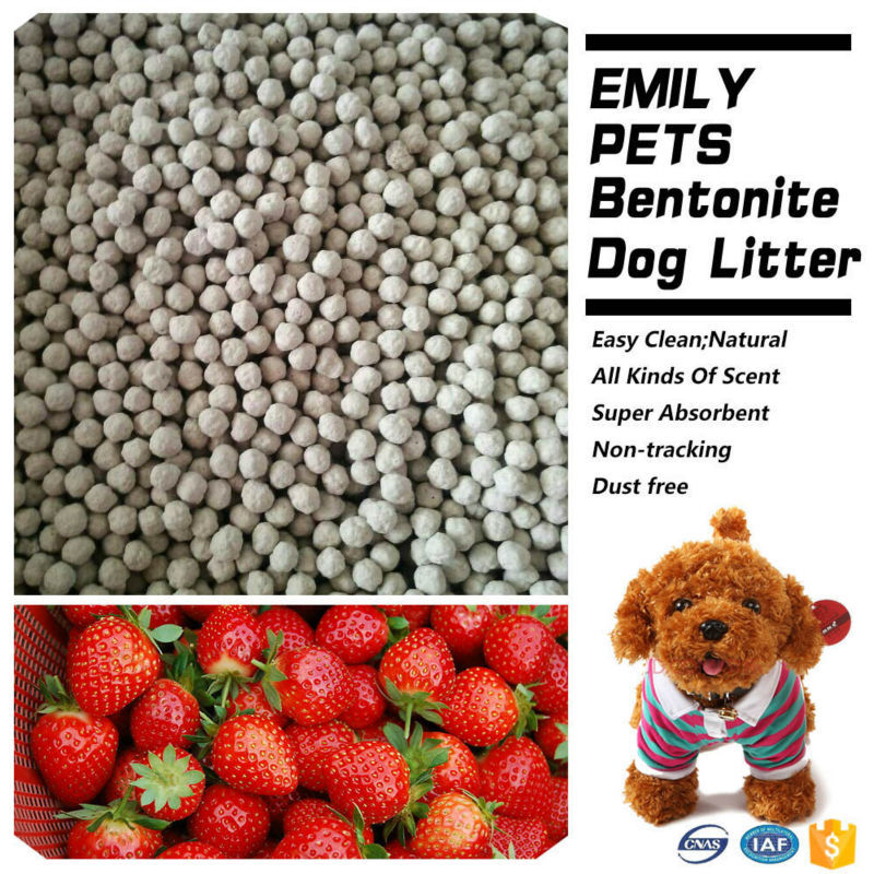 Pet Cleaning Products Fresh Dog Litter
