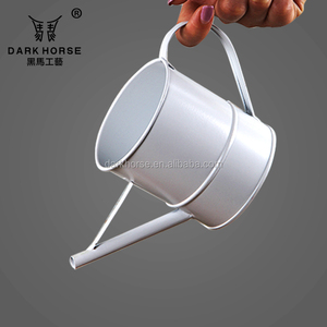 ZAKKA galvanized watering can metal flower pot for decor
