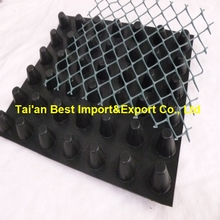 Plastic drainage cell and drainage board