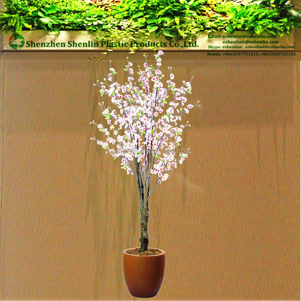 Wholesale pink cherry blossom tree pink cherry blossom for Cherry trees for sale