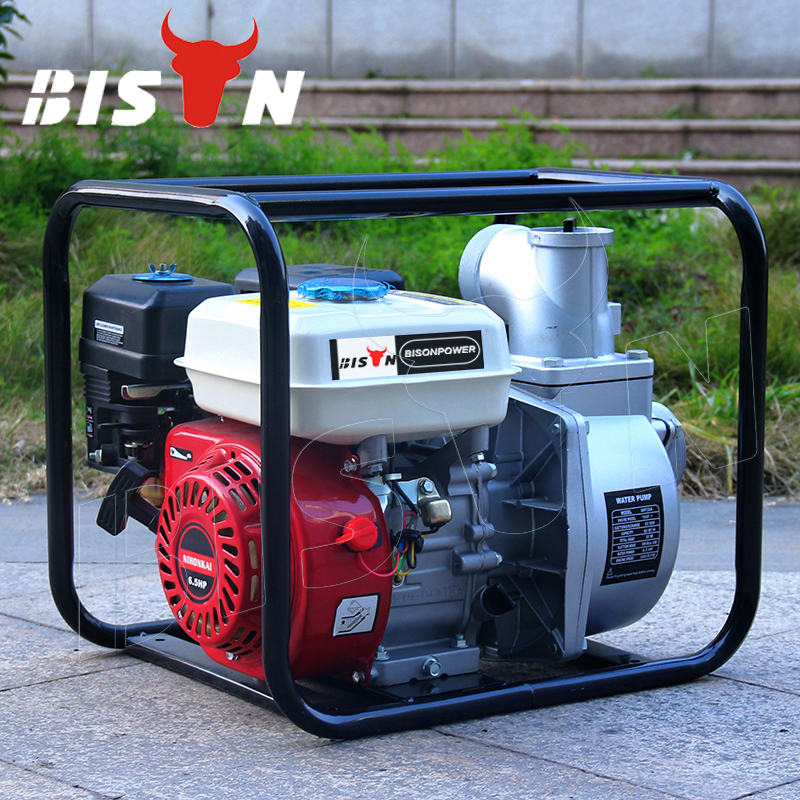 BISON CHINA 2 Inch Centrifugal Pump GX160 5.5 HP Honda Water Pumps Water Motor Pump Price