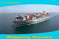 Buenos dias !professional sea container forwarding service from china to spain---Lulu
