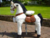 Walking horse Toy