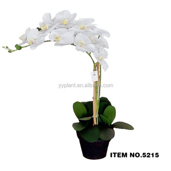 Cheap Wholesale Latex Nature Touch Orchid Artificial Flowers With