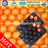 29*39cm Black Factory Price Decorative Fruit Plates