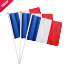 Factory Price Mini National Shaking Flag With Plastic Pole Wave Hand Flag