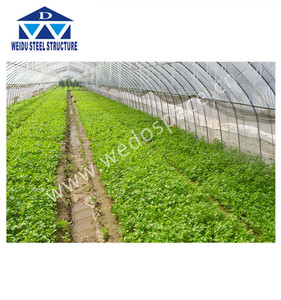 Low cost agriculture greenhouse commercial greenhouse for sale used greenhouse sale