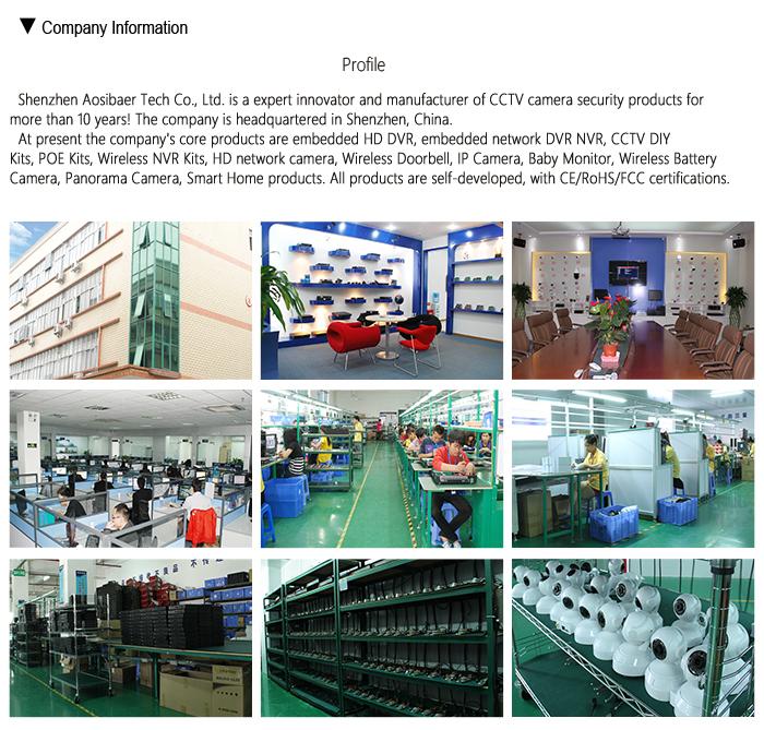 2019 neueste Fabrik Großhandel HD 2MP WiFi Panorama 360 Grad PTZ CCTV Kamera