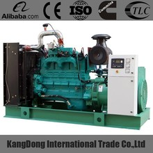 Specialized in manufacturing natural gas generator with CHP System and good price