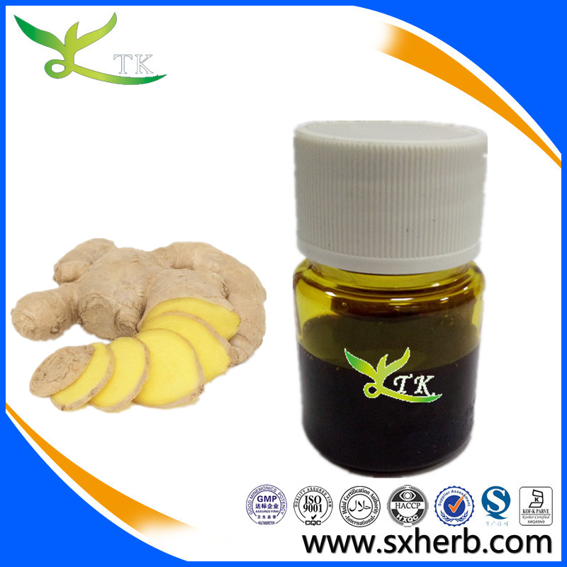 Provide ginger oil with best price