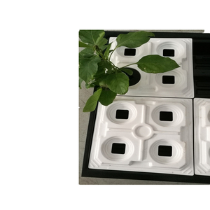 12 Cells Holes Plant Seeds Grow Box Tray Cloning Insert Propagation Seeding Kits with solid bottom drain holes
