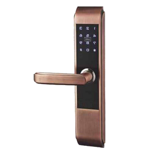 China Antique Copper biometric fingerprint handel lock digital home locks