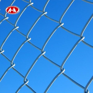 hot sale paint chain link fence black