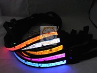 2016 hot sale bear pattern LED Dog Collar leashes, Flashing Dog Collar leashes, Led Dog Leashes Manufacturer