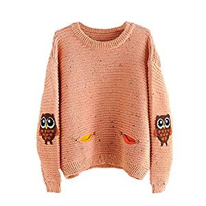 Womens Pullovers - SODIAL(R)Womens Fashion O-Neck Owl Character With Pocket Hit Color Loose Sweater Pullovers (Orange,One Size)