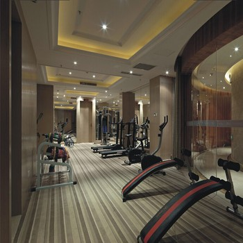 Bisini luxury recreation area design home gym design buy