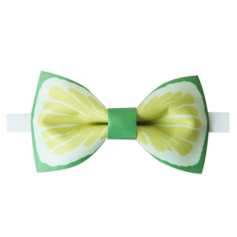 Amytong Mens Luxury Handmade Original Fashion Design Bow Tie