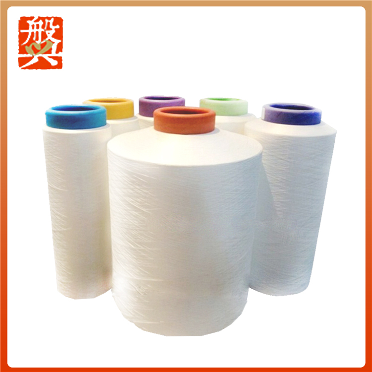 Alibaba China Polyester Nylon 6 Yarn Dty
