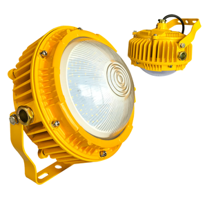 For Hazardous Area Warranty 5 Years 40W High Power Lamp Led Flood Lighting 40W Led Explosion Proof Light