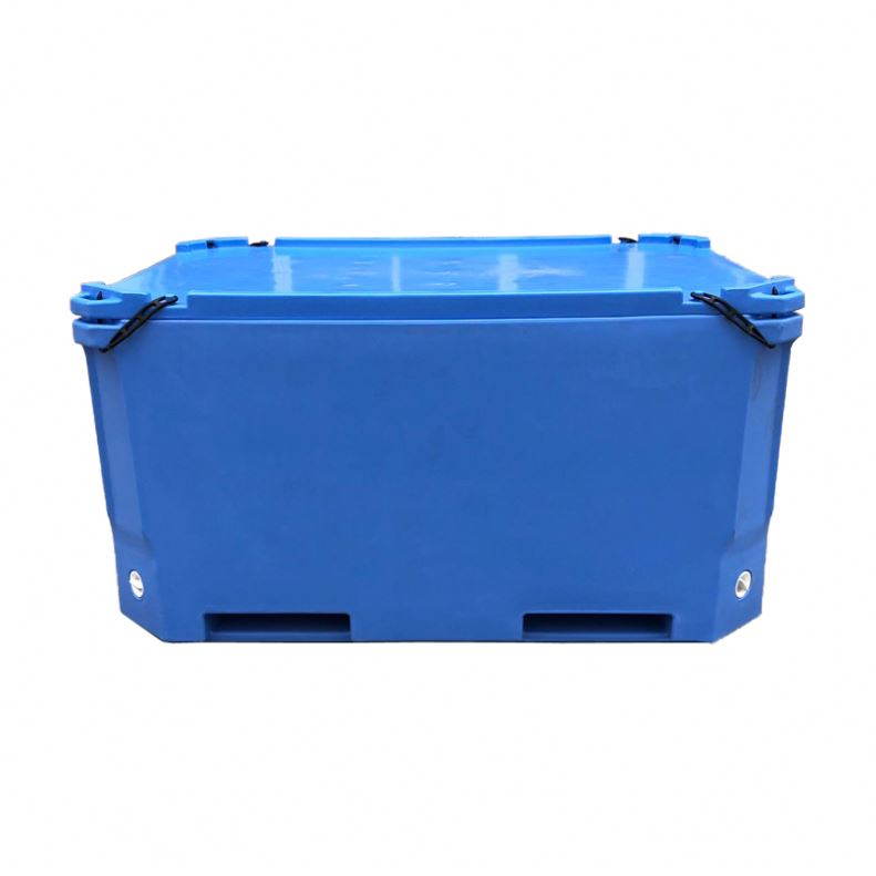 Vissen Auto Koelkasten Grote Ice Box Voor Commerciële Koelers 1000 Liter