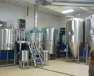 ACE Mini/Nano Beer Brewing Equipment/Micro Used Brewery Equipment Home Beer Fermenting Machine For Sale